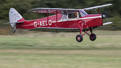 G-AELO - Private de Havilland DH. 87 Hornet Moth