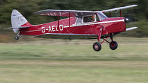 G-AELO - Private de Havilland DH. 87 Hornet Moth aircraft