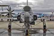 761544 - USA - Navy Northrop F-5N Tiger II aircraft