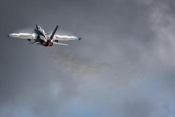 HN-411 - Finland - Air Force McDonnell Douglas F-18C Hornet