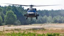 14-20650 - USA - Army Sikorsky UH-60M Black Hawk aircraft