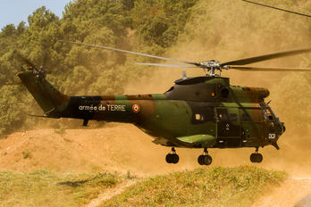 - - France - Army Aerospatiale AS332 Super Puma