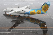 JA802K - Air Nippon Network de Havilland Canada DHC-8-300Q Dash 8 aircraft