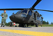 161237 - Sweden - Air Force Sikorsky UH-60M Black Hawk aircraft