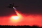 Poland - Air Force 4072 image