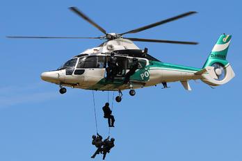 D-HBWA - Germany -  Bundespolizei Eurocopter EC155 Dauphin (all models)