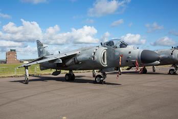 ZH803 - Royal Navy British Aerospace Sea Harrier FA.2