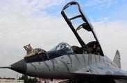 - - Slovakia -  Air Force Mikoyan-Gurevich MiG-29UB aircraft