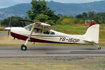 YS-150P - Private Cessna 170