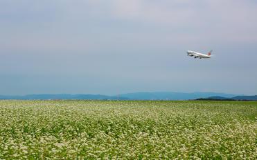 - - JAL - Japan Airlines Boeing 767-200