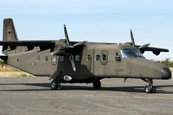 MM62158 - Italy - Army Dornier Do.228