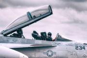 AD-234 - USA - Navy Boeing F/A-18F Super Hornet aircraft