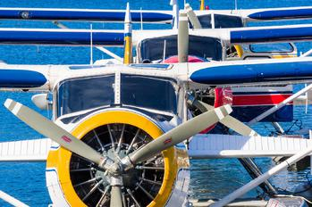 - - Harbour Air de Havilland Canada DHC-2 Beaver