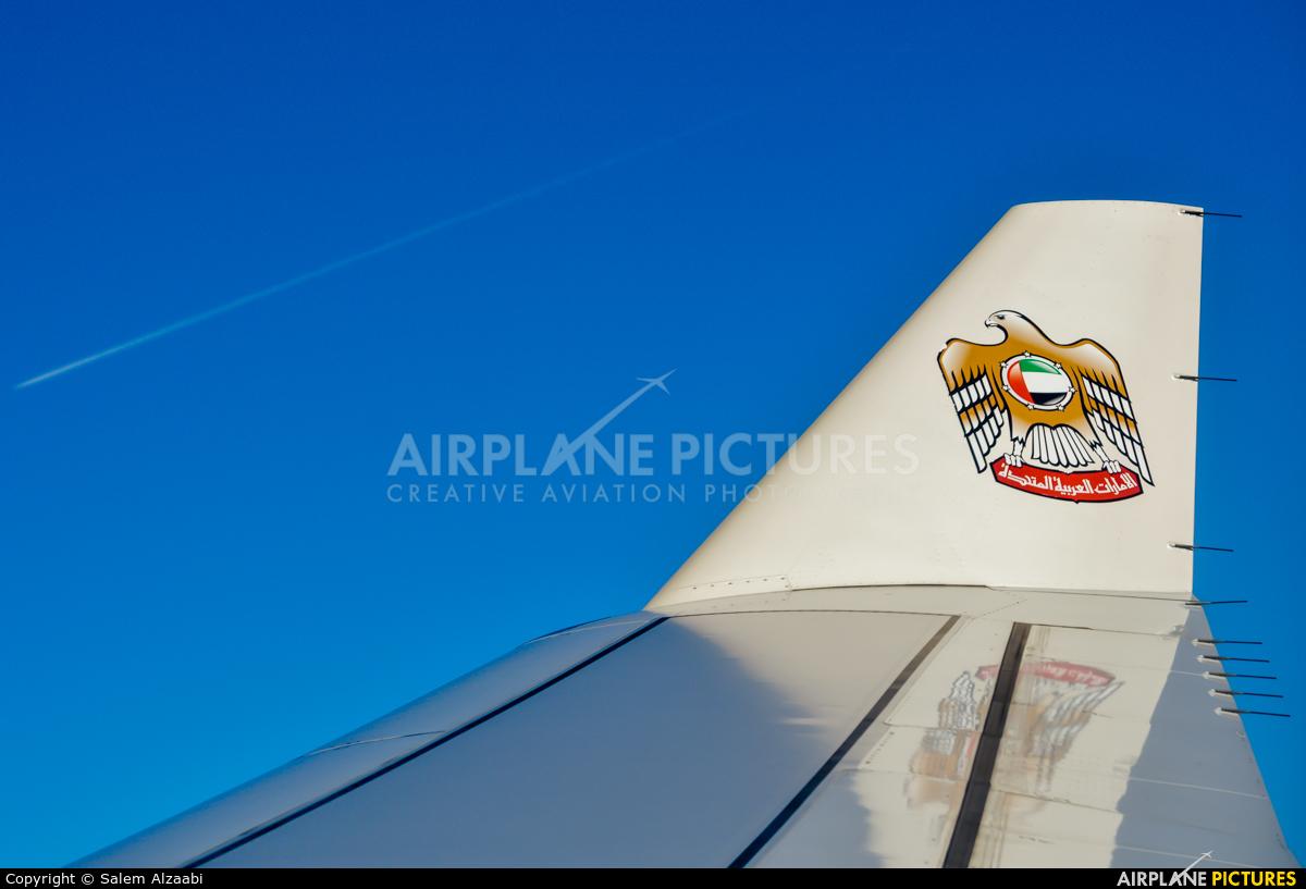 Etihad Airways A6-AFE aircraft at In Flight - International