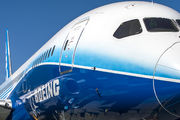 N787BX - Boeing Company Boeing 787-8 Dreamliner aircraft