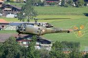 HB-XXM - Private Sud Aviation SA-316 Alouette III aircraft