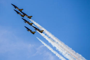 - - Baltic Bees Jet Team Aero L-139 Albatros