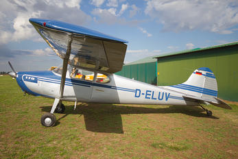 D-ELUV - Private Cessna 170