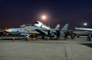 3-6030 - Iran - Islamic Republic Air Force Grumman F-14A Tomcat aircraft