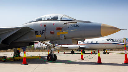 3-6030 - Iran - Islamic Republic Air Force Grumman F-14A Tomcat