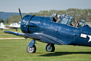 G-TEXN - Private North American Harvard/Texan (AT-6, 16, SNJ series) aircraft