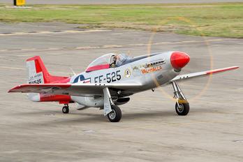 N151AF - Private North American P-51D Mustang