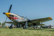 NL151JT - Private North American P-51D Mustang aircraft