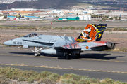 C.15-41 - Spain - Air Force McDonnell Douglas EF-18A Hornet aircraft
