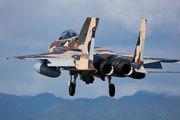 92-8096 - Japan - Air Self Defence Force Mitsubishi F-15DJ aircraft
