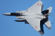 32-8058 - Japan - Air Self Defence Force Mitsubishi F-15DJ aircraft