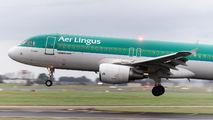EI-DVE - Aer Lingus Airbus A320 aircraft