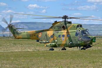 61 - Romania - Air Force IAR Industria Aeronautică Română IAR 330L-Socat Puma