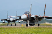 92-8095 - Japan - Air Self Defence Force Mitsubishi F-15J aircraft