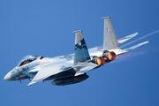 72-8090 - Japan - Air Self Defence Force Mitsubishi F-15DJ aircraft