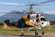 C-FIGR - Vancouver Island Helicopters Logging  Kamov Ka-32 (all models) aircraft
