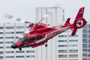 JA119E - Japan - Fire and Disaster Management Agency Eurocopter AS365 Dauphin 2 aircraft