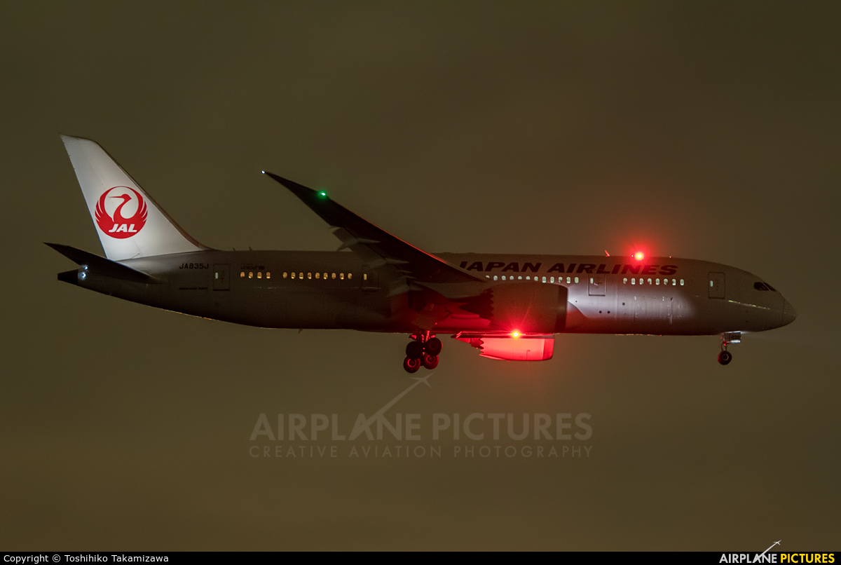 JAL - Japan Airlines JA835J aircraft at Tokyo - Haneda Intl