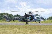 FAB8517 - Brazil - Air Force Eurocopter EC725 Caracal aircraft