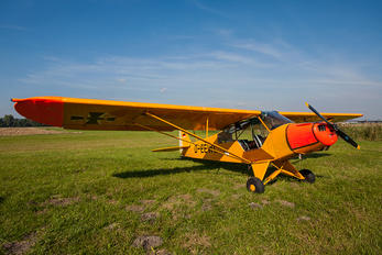D-EEWL - Private Piper PA-19 Super Cub