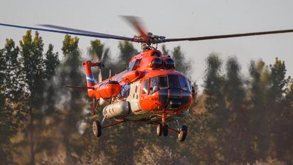 H-95 - Argentina - Air Force Mil Mi-171