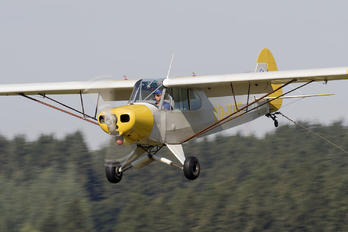 OO-VVG - Private Piper PA-18 Super Cub
