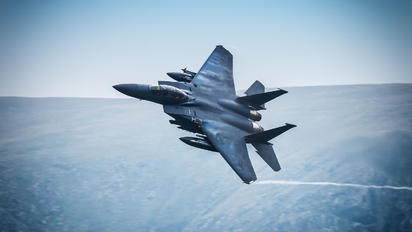 91-0314 - USA - Air Force McDonnell Douglas F-15E Strike Eagle