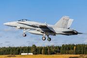 HN-417 - Finland - Air Force McDonnell Douglas F-18C Hornet aircraft