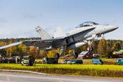 HN-461 - Finland - Air Force McDonnell Douglas F-18D Hornet aircraft