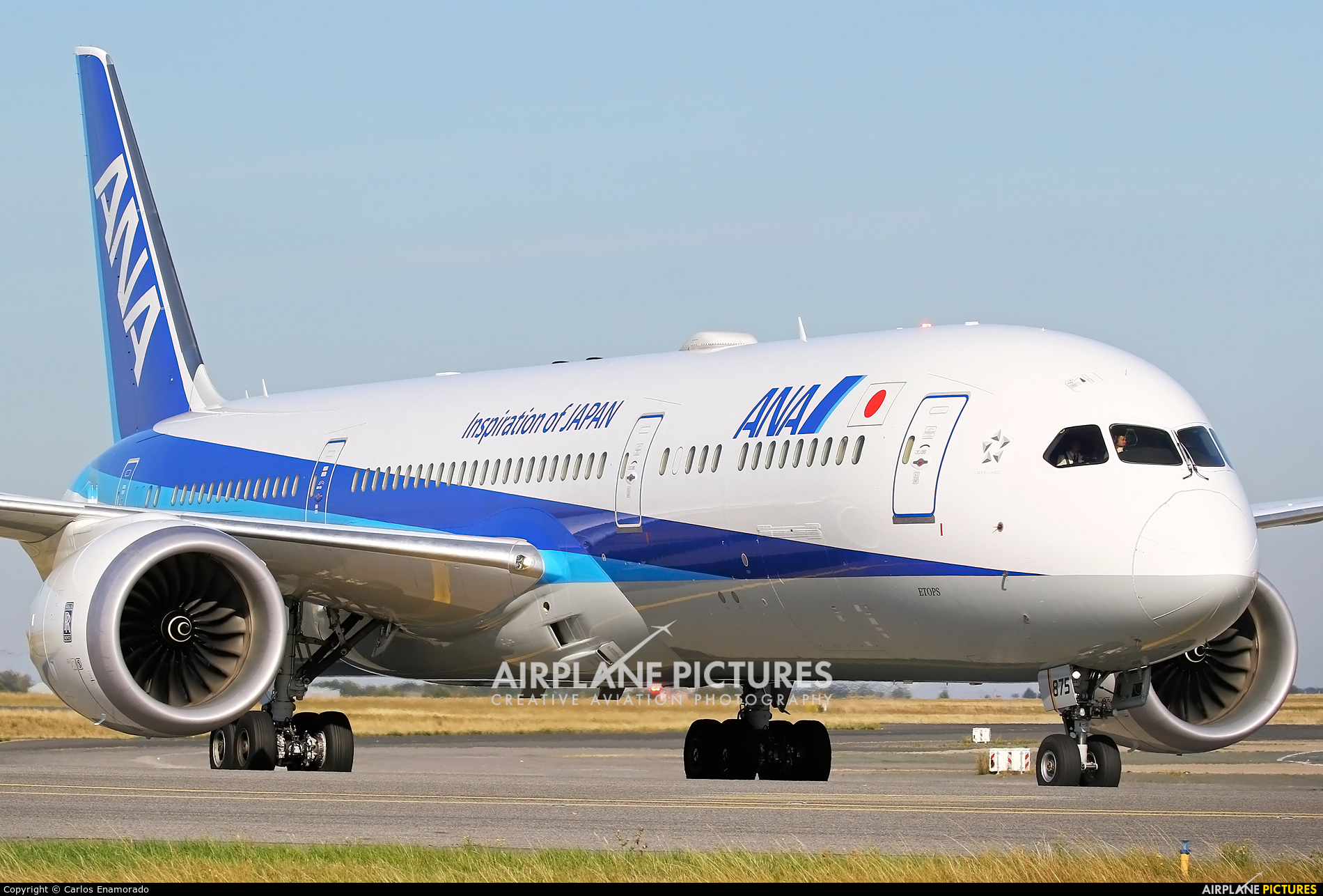 ANA - All Nippon Airways JA875A aircraft at Paris - Charles de Gaulle