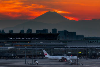 JA822J - JAL - Japan Airlines - Airport Overview - Overall View