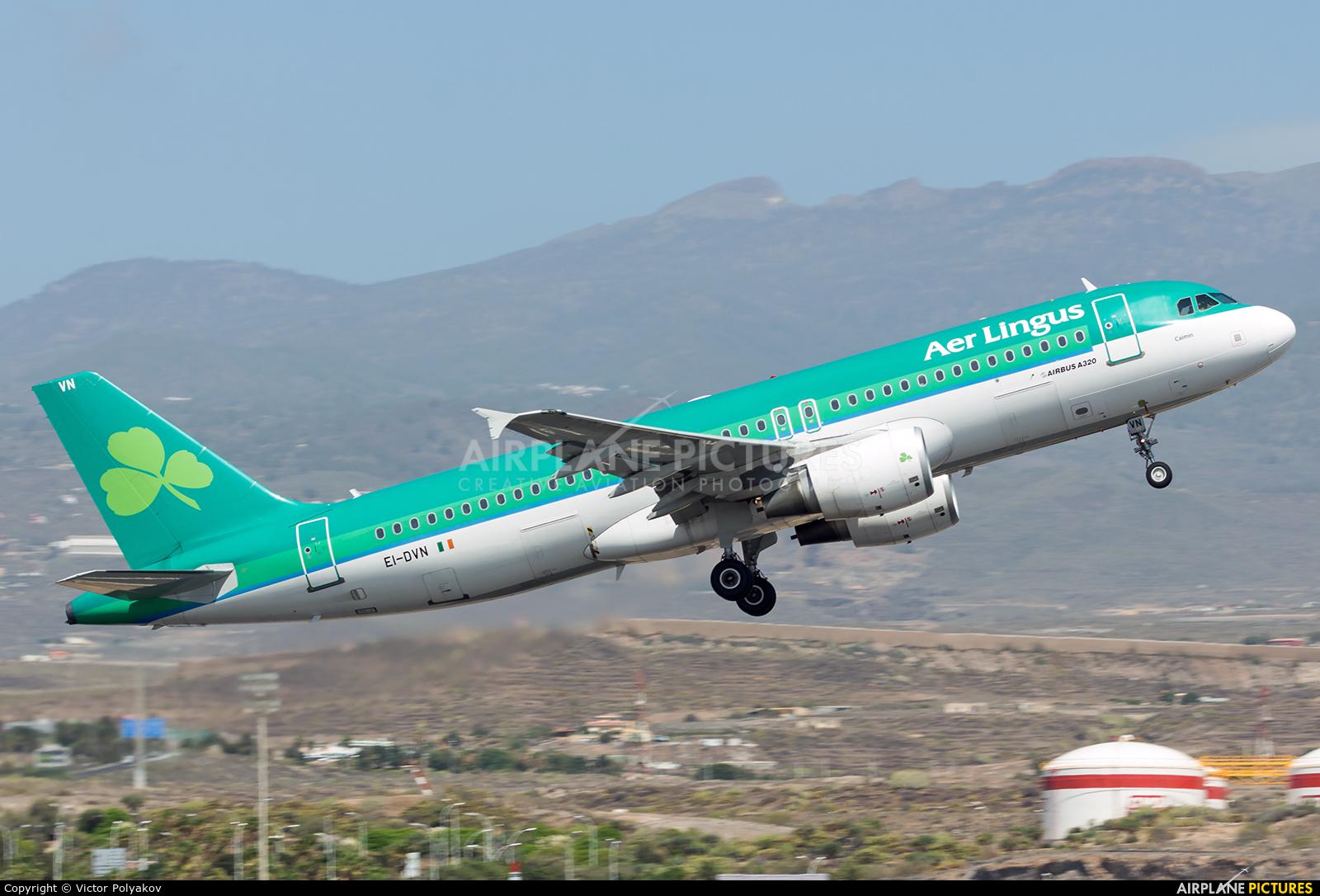 Aer Lingus EI-DVN aircraft at Tenerife Sur - Reina Sofia