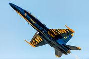 163484 - USA - Navy : Blue Angels McDonnell Douglas F-18D Hornet aircraft