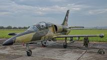 5019 - Czech - Air Force Aero L-39ZA Albatros aircraft
