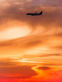 - - Skymark Airlines Boeing 737-800 aircraft